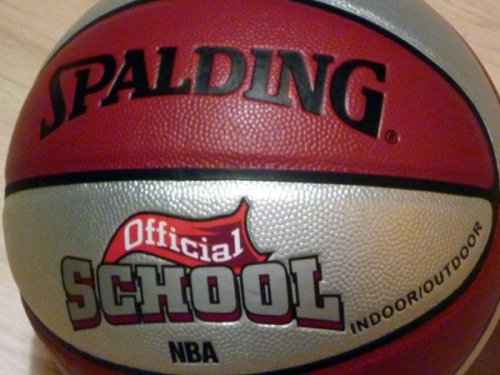 Pelota minibasket, NBA official Old Scholl by Spalding